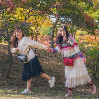 Hàn Quốc mùa thu 24.10.2019